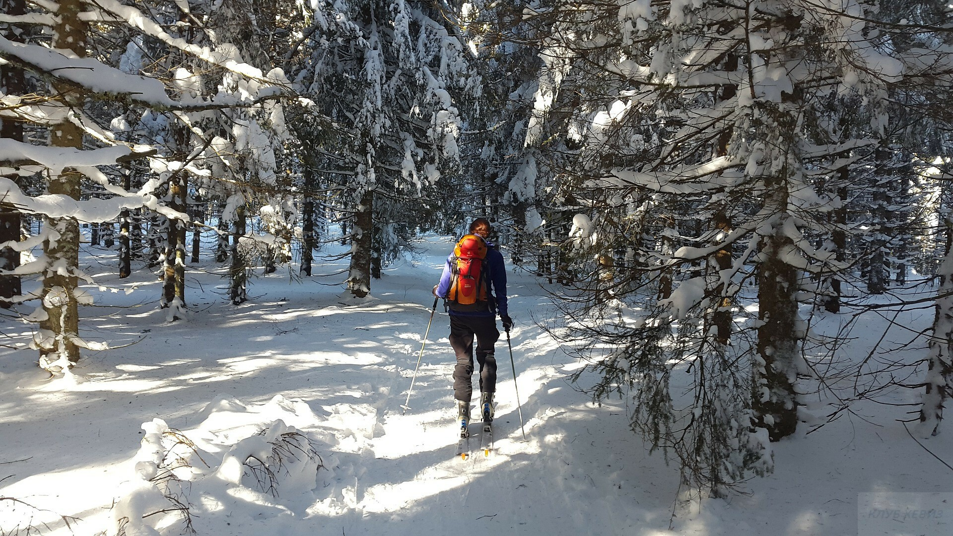 где кататься на беговых лыжах